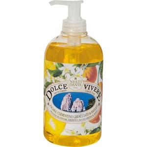 Nesti-Dante-Firenze-Dolce-Vivere-Capri-Liquid-Soap-78621